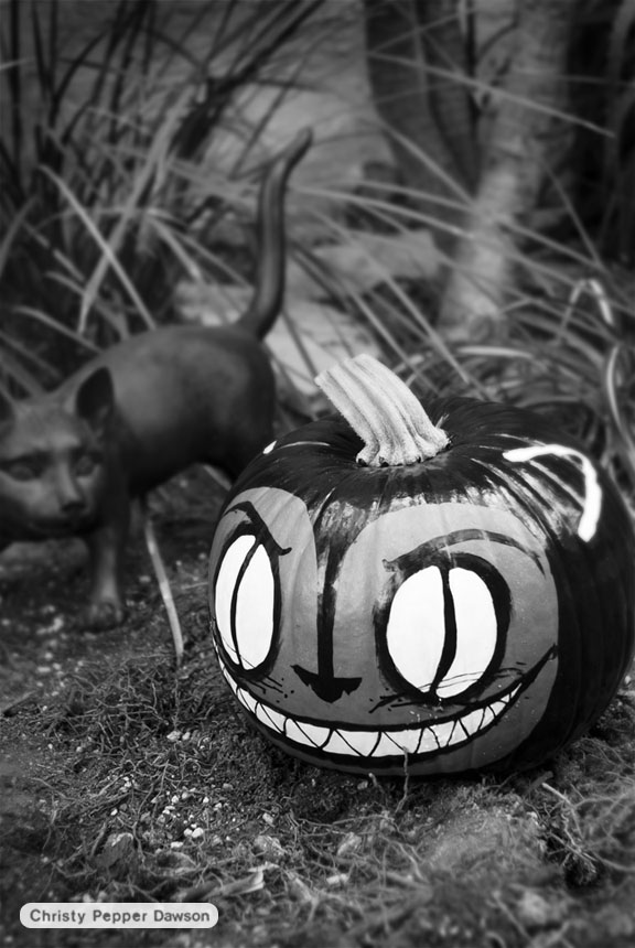 halloween pumpkin by christy pepper dawson