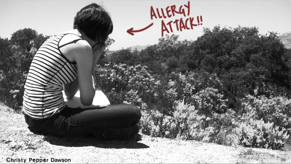 potrero california allergy attack